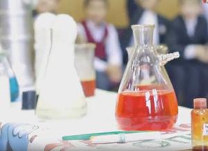 Научное шоу в школе