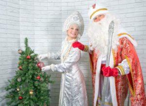 дед мороз и снегурочка на дом, дед мороз на праздник, чудные штуки